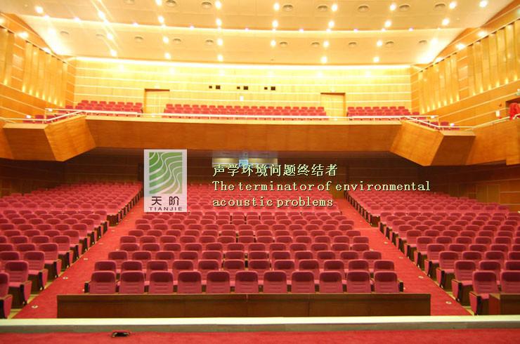 广西文化中心吸音处理方案