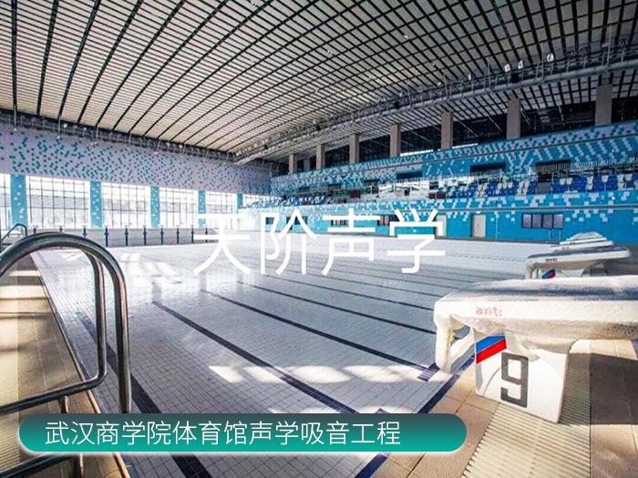 武汉商学院体育馆声学吸音工程